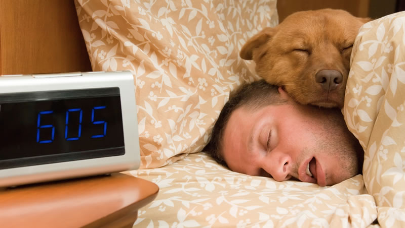 Photo of man sleeping with dog
